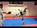 Vertimax Kicks