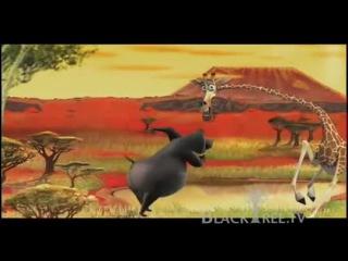 Мадагаскар 2, i Like, to, move