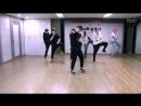 BTS - Boy In Luv ( Dance Practice )