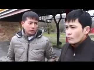 ашык кыз бен жабык кыздын айырмашылыгы))))