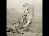 сергей мазуренко -мне бы дьявола коня
