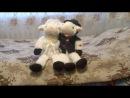 Поющие овечки