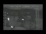 Мутанты из Чернобыля разорвали мужчину!