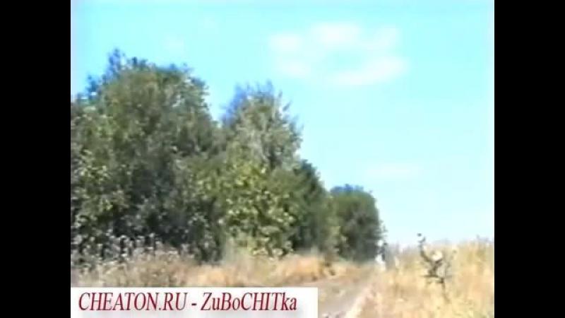 видеоверсия 2004г. Виктор Хой в панк-рок сказке царевна лягушка