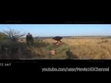 Казнены ополченцы бригады 'Призрак' полная версия HD