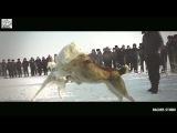 Собачии бой под песню Жанар Дугаловы