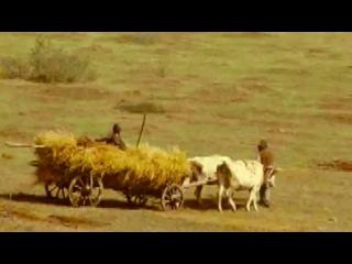 · Misterele Culturii Cucuteni [doc] ~ video.Ro