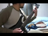 Nile - Enduring The Eternal Molestation of Flame (guitar cover)