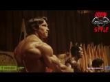 Набор мышечной массы от Арнольда Шварценеггера. Arnold Schwarzenegger. Спорт мышцы качалка