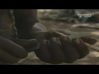 Искусство выживания Рэя Мирса - Сердце рифтовой долины.