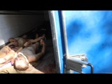 Donetsk Morgue - Civilian Victims of Ukrainian Shelling