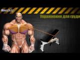 Как накачать грудные мышцы (упражнения и особенности)