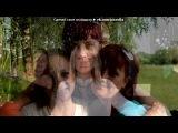 «ленча» под музыку Bestii - C Днём Рождения (Аллегрова). Picrolla