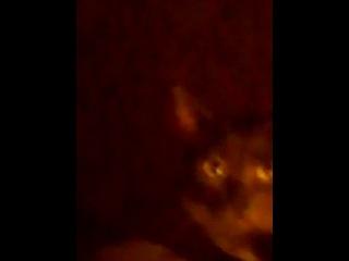 жан-кот-моне:-)