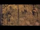 «Ветер странствий» (киностудия им. Горького, 1978) — песня Красный конь