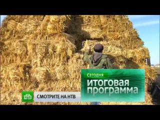 «Сегодня» в 13:00 на «НТВ» (28.12.2014)