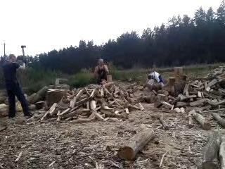 лісопілка
