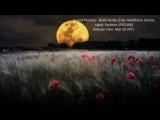 Sound Process - Brain Notes (Dale Middleton Remix)