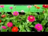 «От весны до осени» под музыку Для души - Ноктюрн.Саксофон и фортепиано КРАСИВАЯ МУЗЫКА. Picrolla