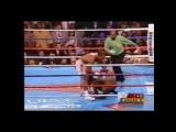 Lennox Lewis vs Mike Tyson (vine)