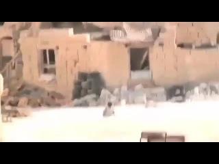 Маленький мальчик спасает свою сестру