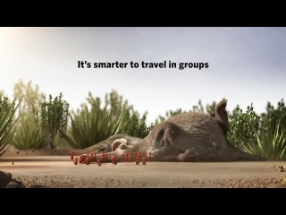 О силе единства (it's smarter to travel in groups)