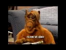 Alf Quote Season 4 Episode 19 - And I spend Valentines Day