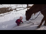 Emma and Cinnamon  Little Girl and Horse Are Best Friends