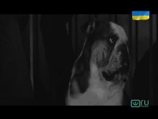 Соломина — Без названия (prod. by DORNaBANDA) (RU Music)