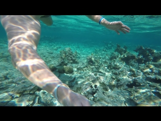 Snorkeling near the shore