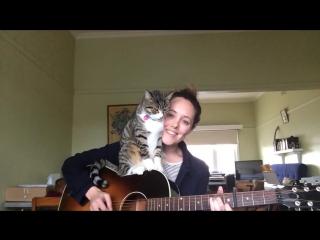 В этом видео прекрасно все: и песня, и девушка, и кот