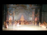Чайковский - Щелкунчик. Па-де-де 30. 12. 14 Театр оперы и балета. Новосибирск