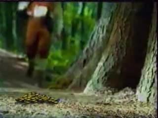 staroetv.su / Рекламный блок (Первый канал, зима 2002) (4)