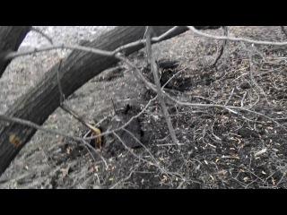19.01.2015 ст.Кировец последствия обстрела РСЗО Град