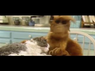 Альф ест кота