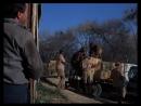 Дактари Daktari США 1966 1 сезон 10 серия