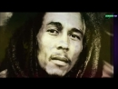 Bob Marley The Wailers All Day All Night