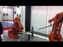 Роботы и самурайские мечи катана