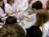 мимимикробиология 2: бактерии во тьме