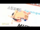 K1 Fedor Emelianenko vs Hong Man Choi