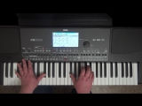 L. van Beethoven - Moonlight Sonata C#m 13 of Part I (korg-piano-live)