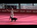Собака і її господиня просто приголомшили глядачів! Якщо вам сподобалося це приголомшливе відео, будь ласка, поділіться ним зі с