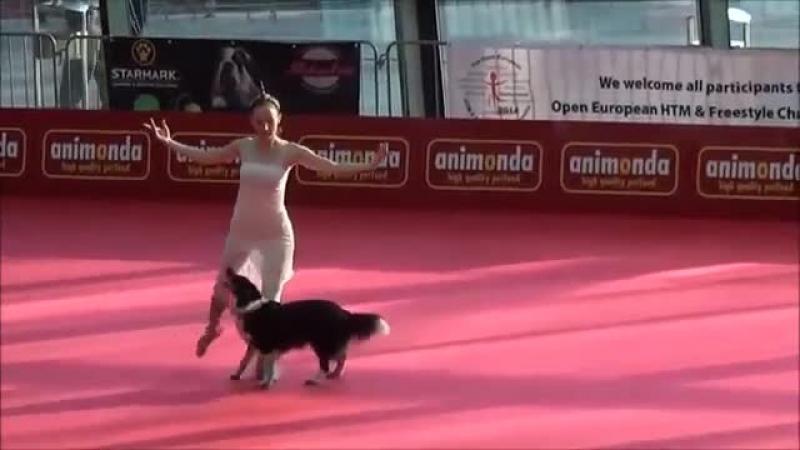 Собака і її господиня просто приголомшили глядачів! Якщо вам сподобалося це приголомшливе відео, будь ласка, поділіться ним зі с » Freewka.com - Смотреть онлайн в хорощем качестве