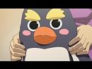 Тёко сестренка Chocotto Sister серия 23