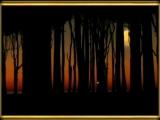 Mozart - Piano Concerto No.21 Andante (Elvira Madigan).mpg.mp4