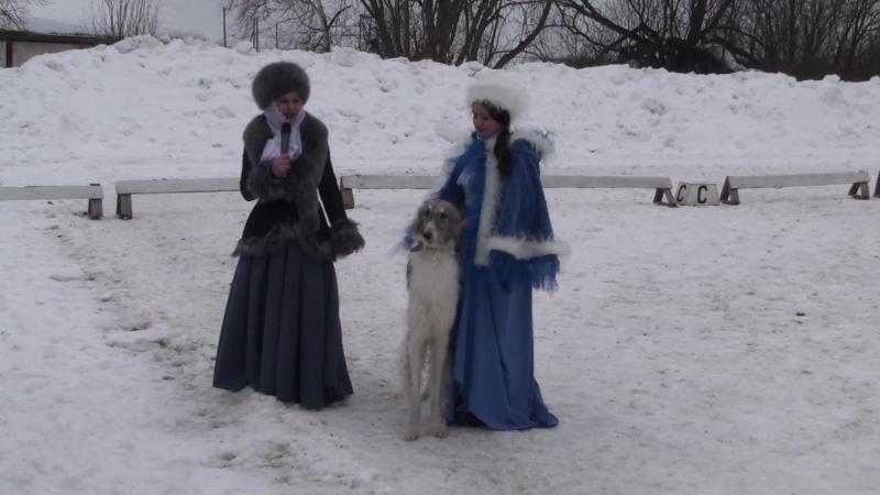 Представление хозяйками борзых, Реконструкция псовой охоты, Центаврион 2015