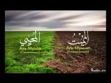 Самый красивый нашид, в Мире!!!