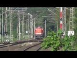 Diesel locos RVM V28 and V45 and DB 152 082 4 in Velpe