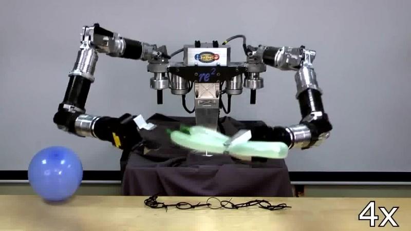 Робот крутит из воздушного шарика рыбку