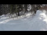 skiboards